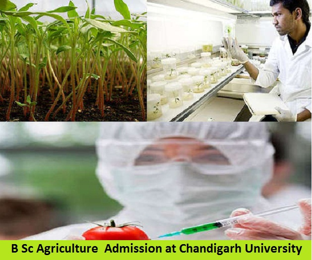 B Sc Agriculture Admission at Chandigarh University