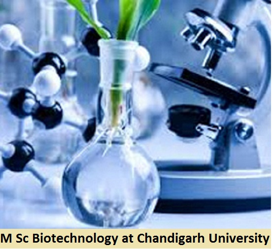 M Sc Biotechnology Admission at Chandigarh University